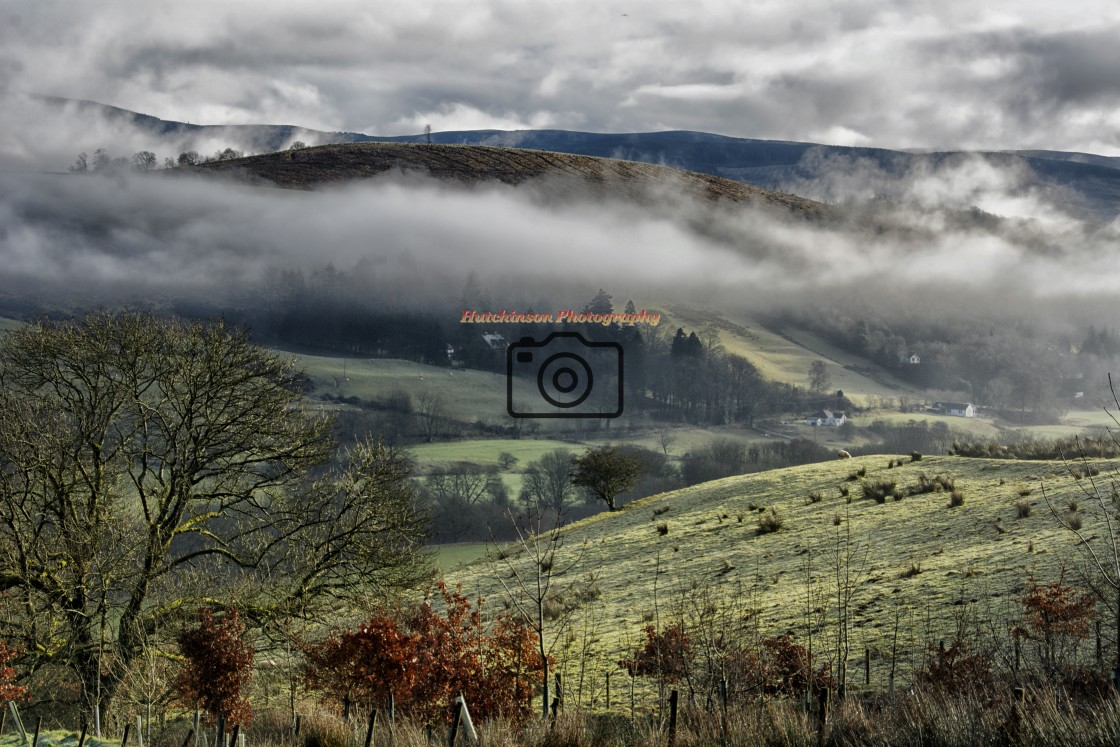 """""""Mist in the countryside, Dumfries and Galloway,"""" stock image"""