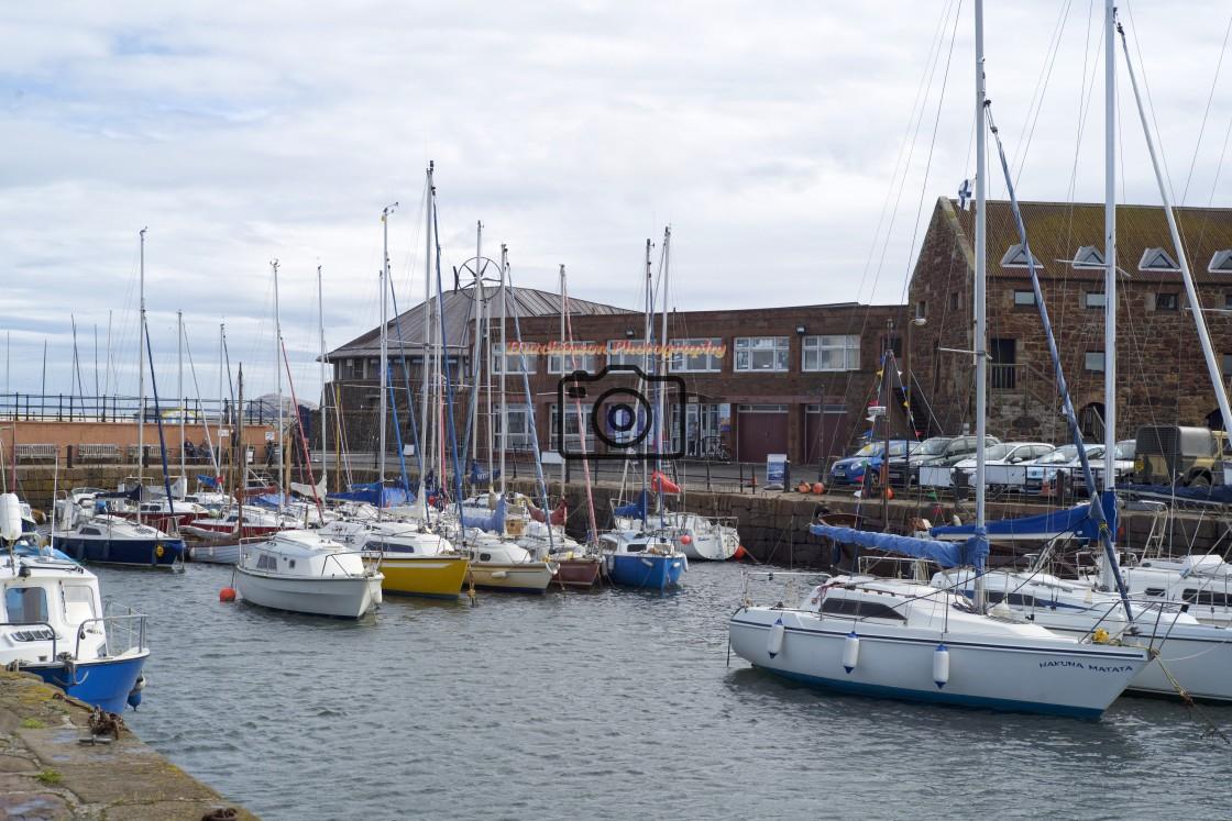 """North Berwick Harbour Scotland."" stock image"