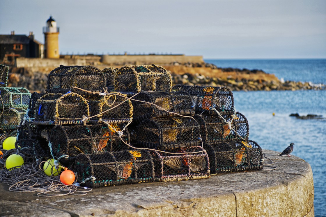 """""""Fishing Baskets Portpatrick, Dumfries and Galloway, Scotland"""" stock image"""