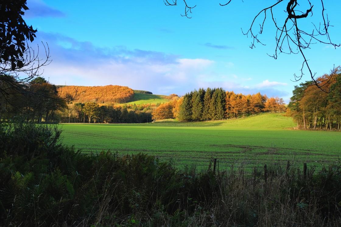 """""""Autumn Landscape United Kingdom"""" stock image"""