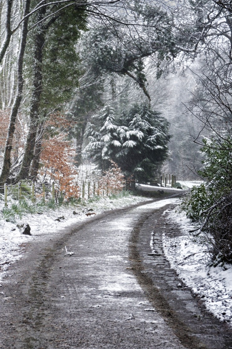 """""""Winter Snow at Dunragit, Dumfries and Galloway"""" stock image"""