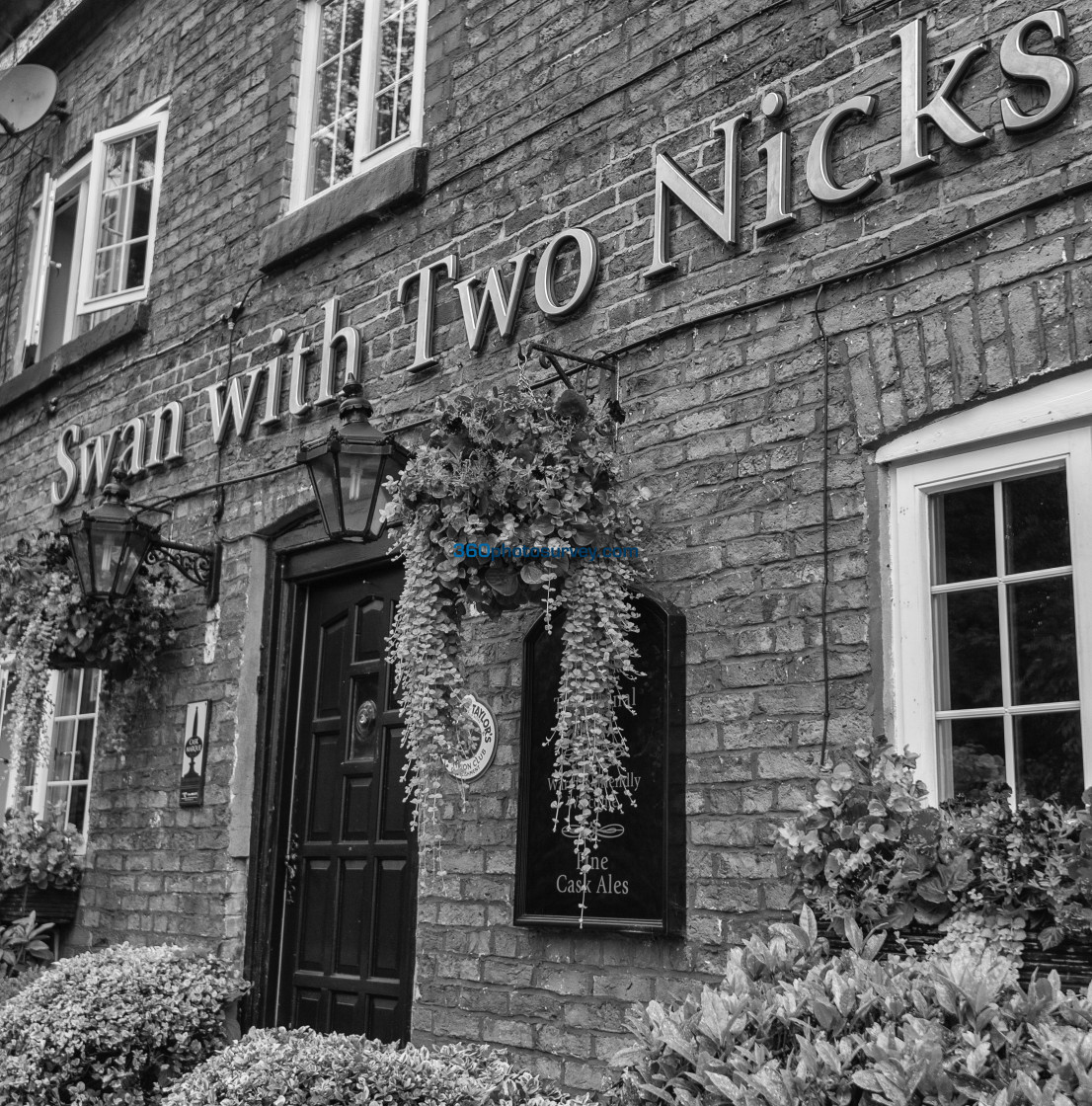 """""""Swan with two nicks pub 190822"""" stock image"""