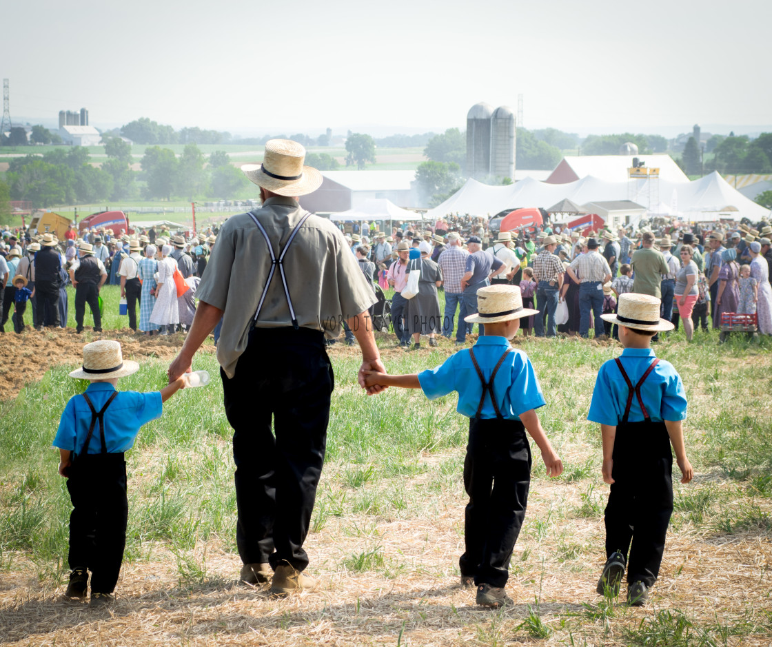 """""""Amish Father and Sons"""" stock image"""