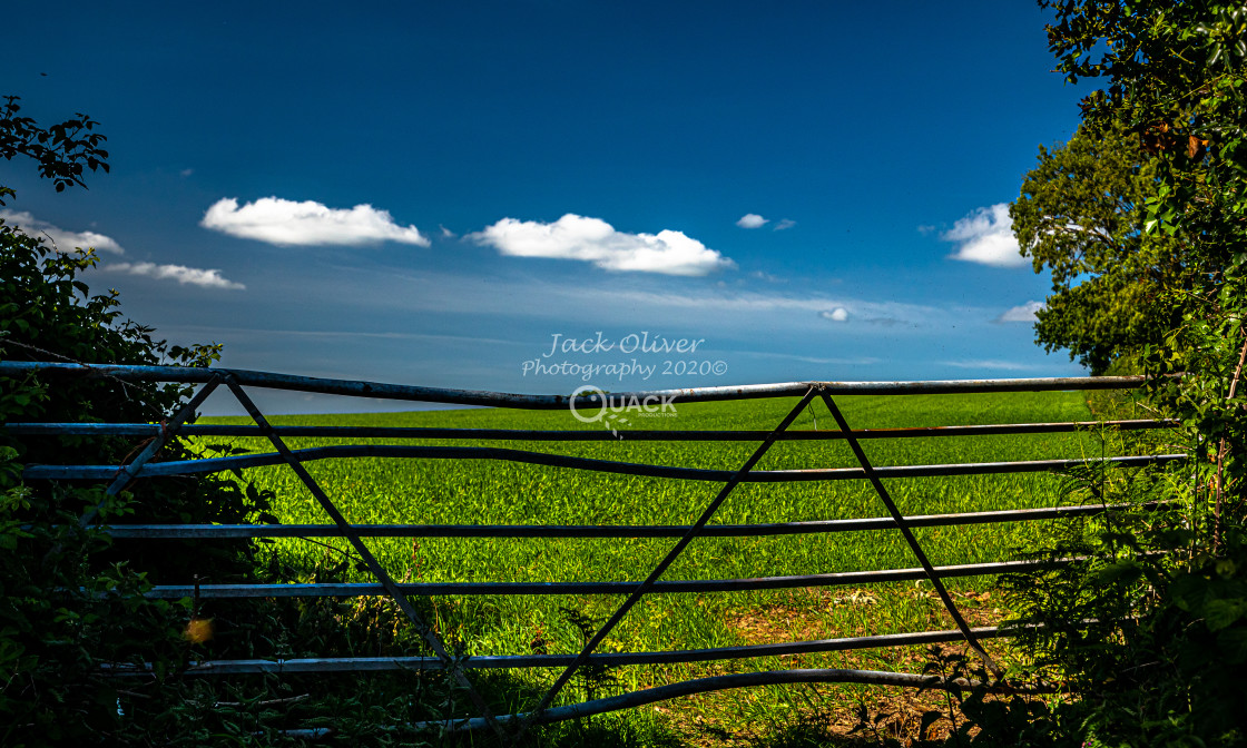 """""""The Twisted Gate"""" stock image"""