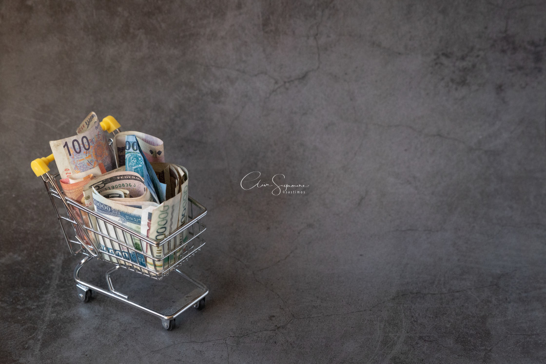 """""""Shopping cart with currency (L)"""" stock image"""