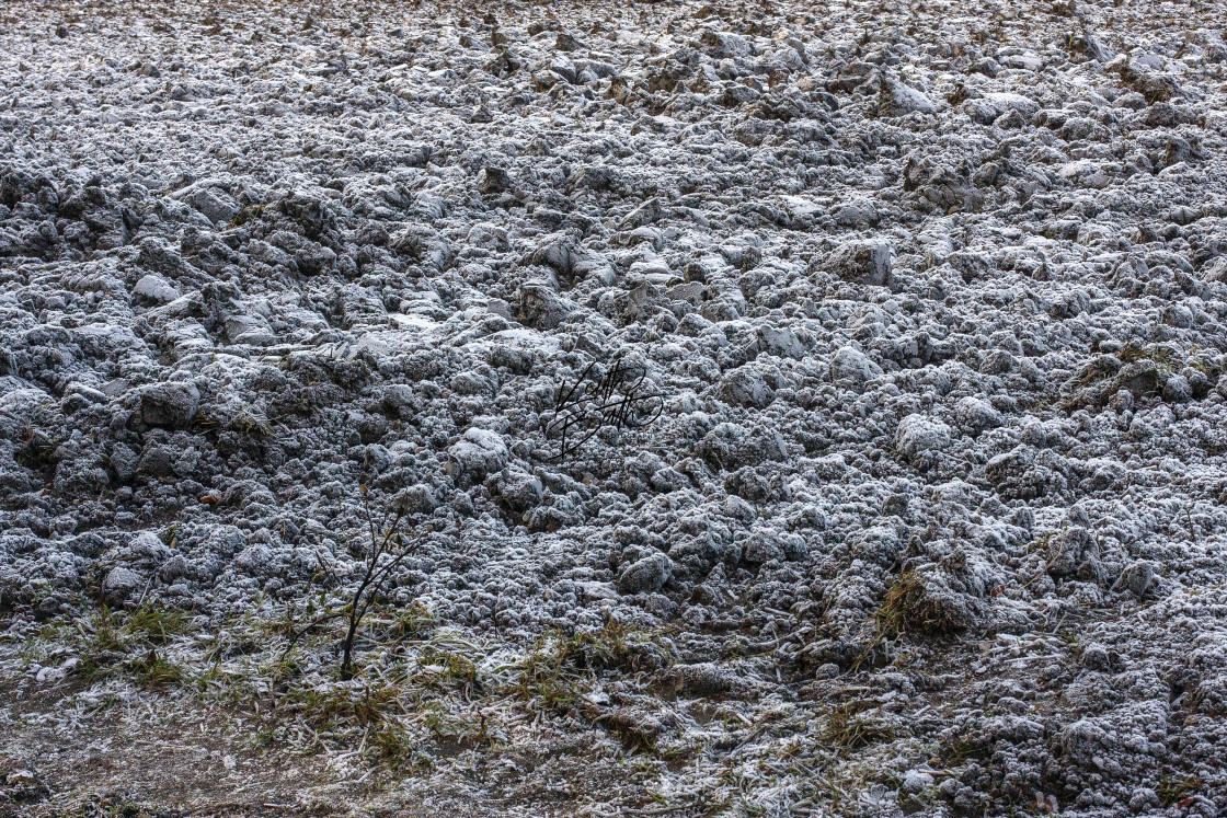 """Frost on ploughed field"" stock image"