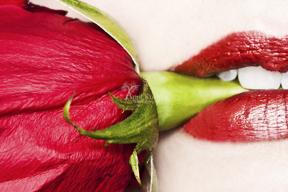 """Red Lips Red Rose"" stock image"