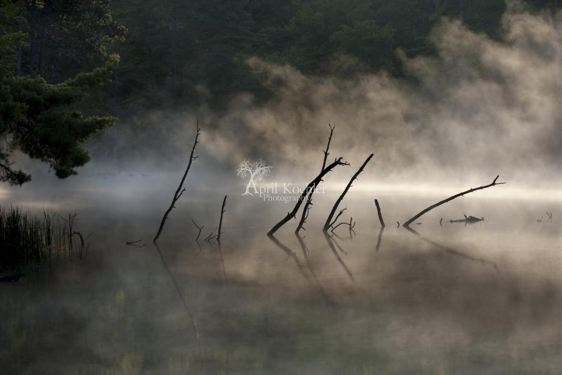 """Mist Rising"" stock image"