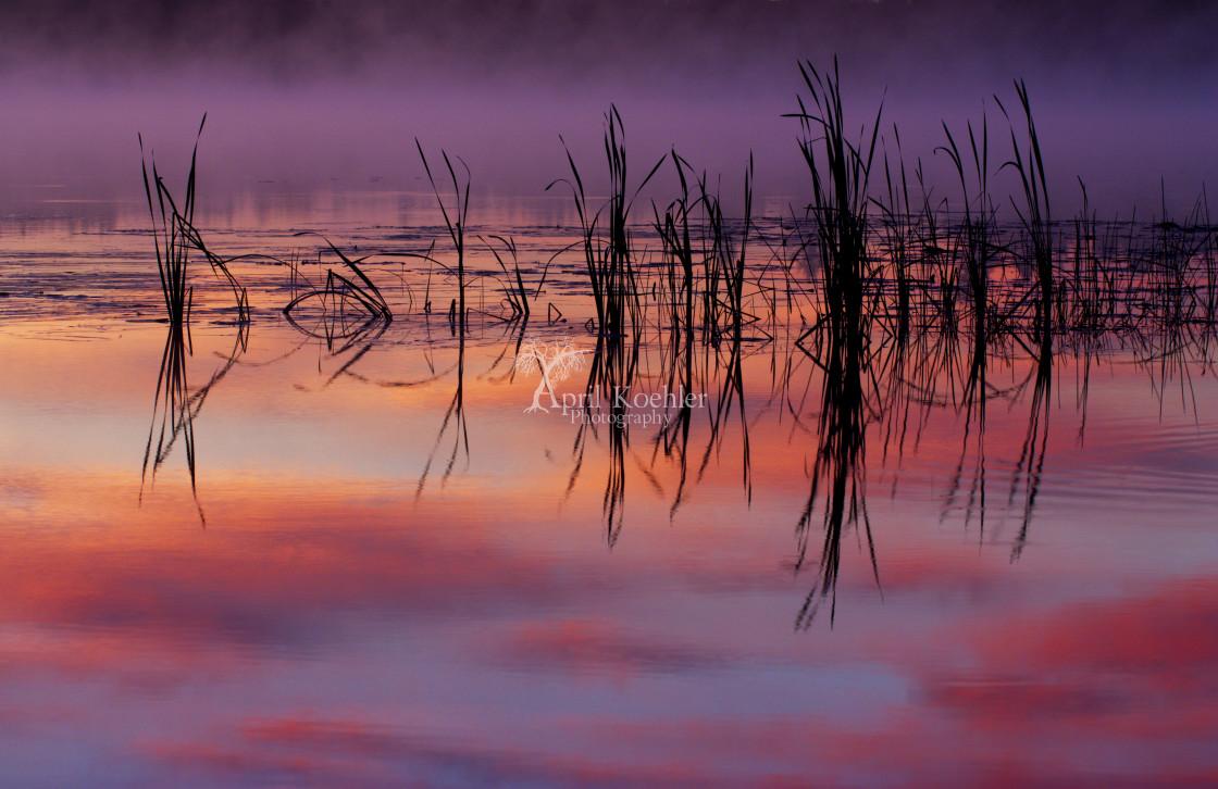 """""""Sunrise Reflection"""" stock image"""