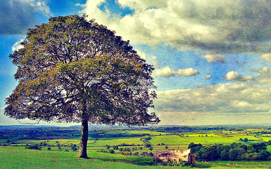 """""""View From Dyrham Park Looking Towards Bristol"""" stock image"""