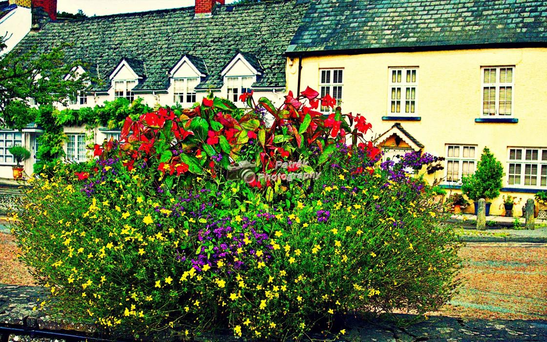 """Floral Display - Usk, Herefordshire"" stock image"