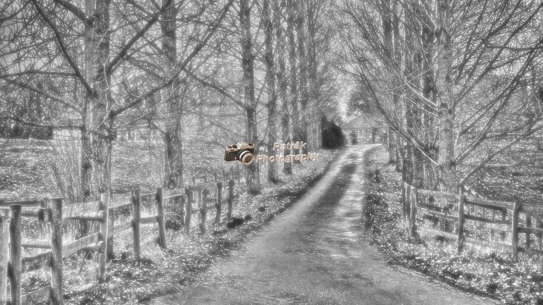 """""""Dramatic Driveway"""" stock image"""