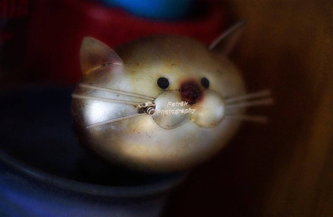 """""""Cat Wine Bottle Stopper"""" stock image"""