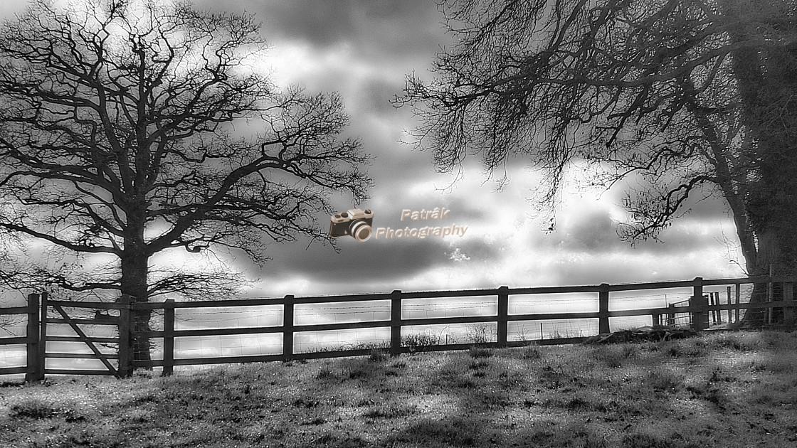 """Wooden Fence & Dappled Light"" stock image"