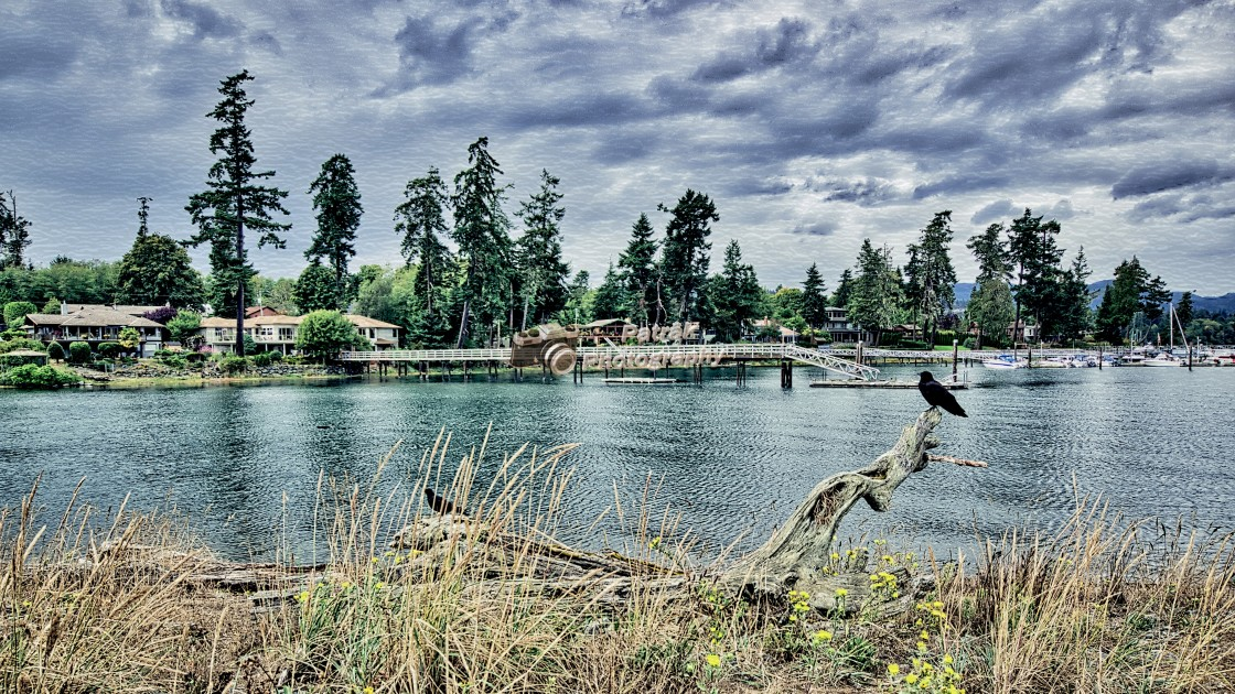 """""""Whiffin Spit Harbour - Vancouver Island, BC"""" stock image"""