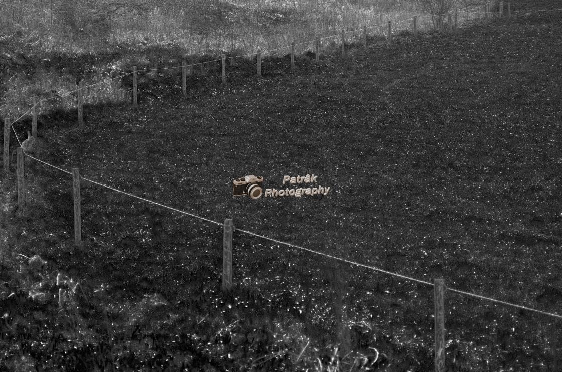 """Rope Fence"" stock image"