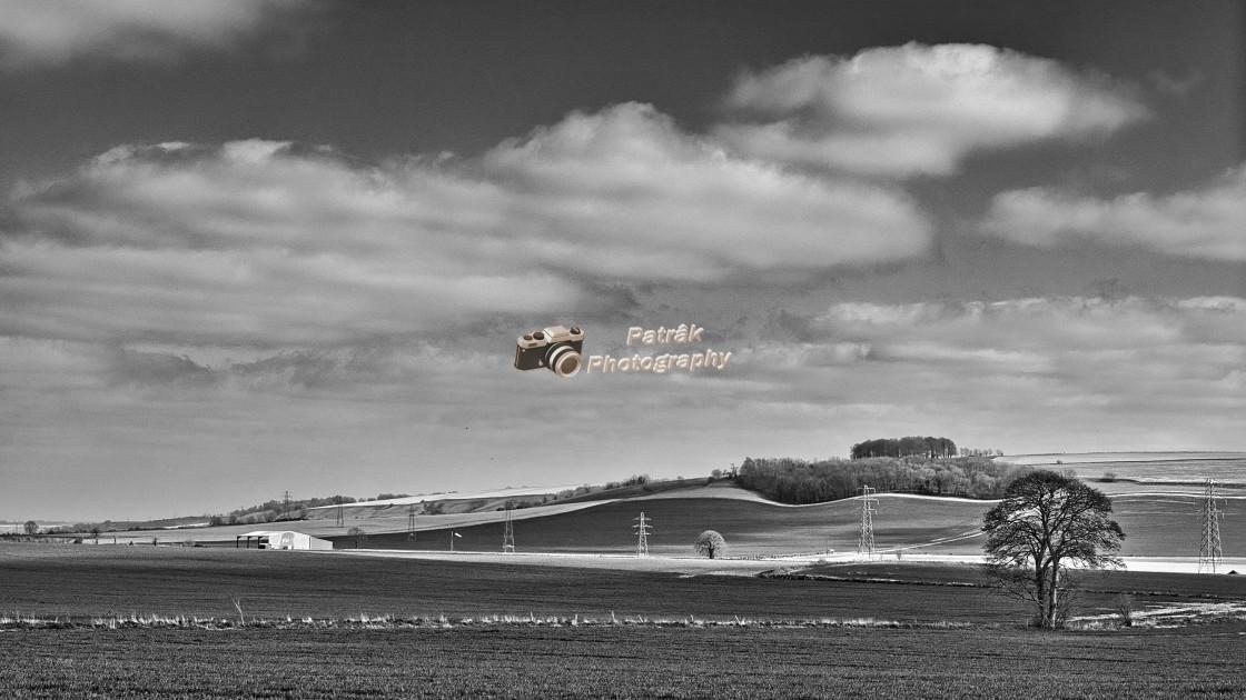 """""""Goosehole Plantation - Urchfont, Wiltshire, England"""" stock image"""