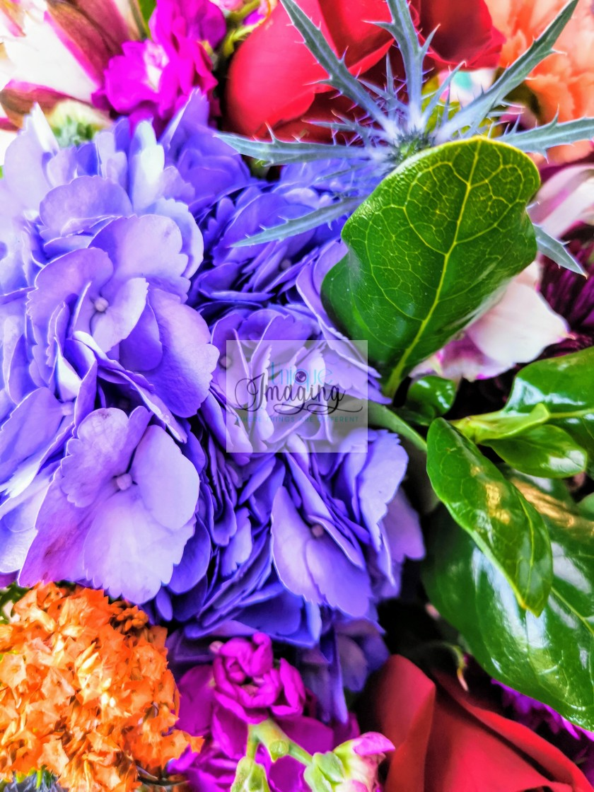 """""""The Bouquet"""" stock image"""