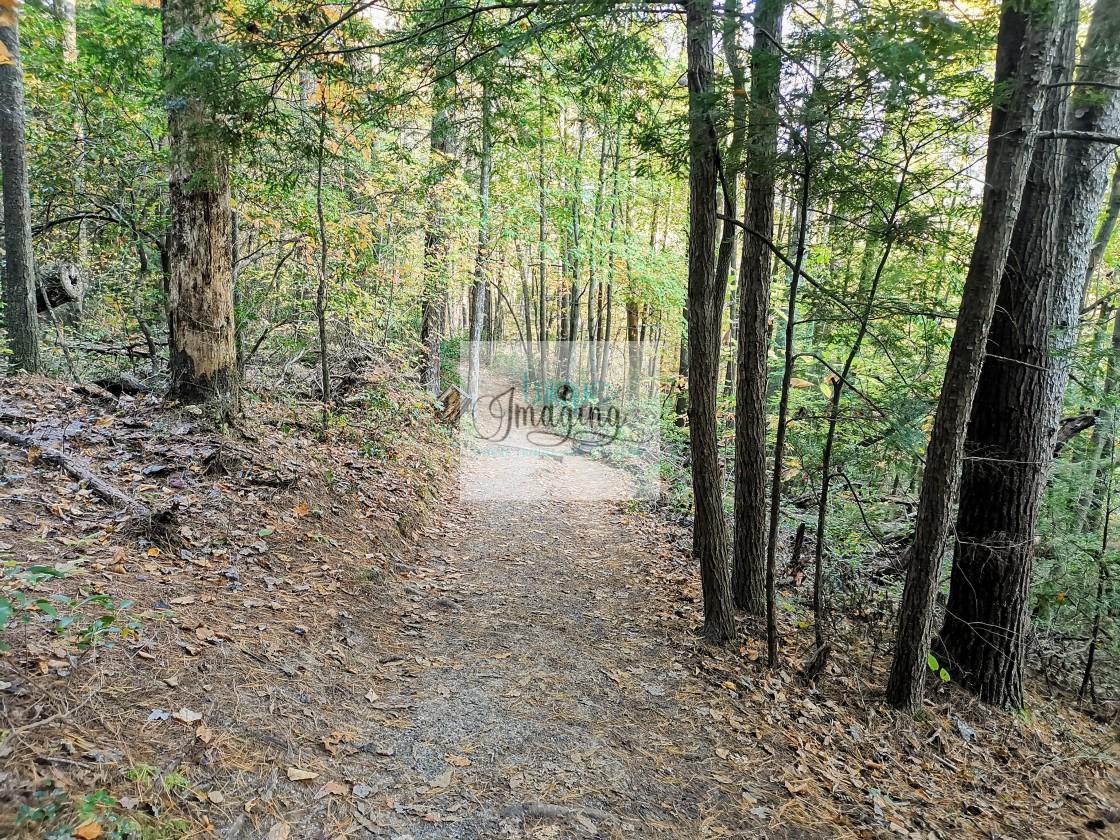 """Rockbridge Trail"" stock image"