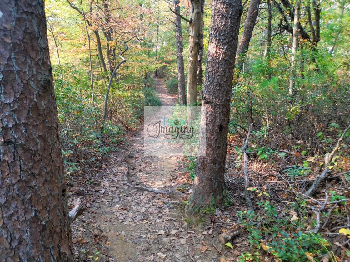 """Rockbridge Trail in the Fall"" stock image"