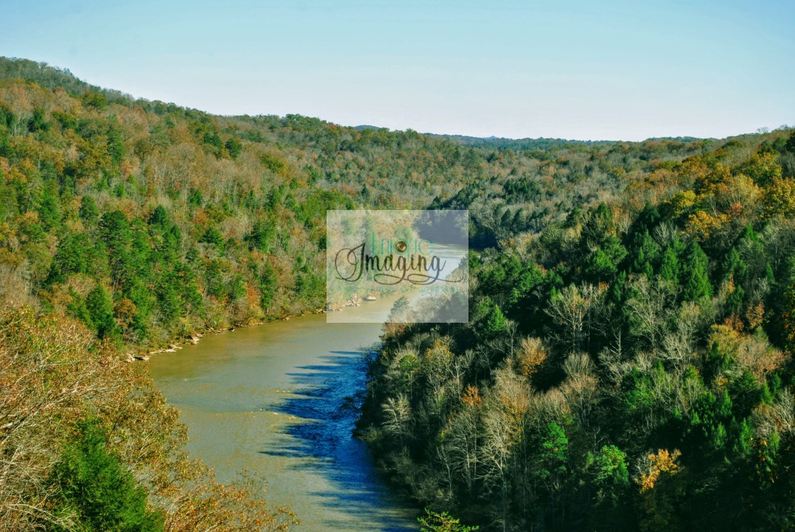 """""""A CLOSEUP VIEW OF THE CUMBERLAND RIVER"""" stock image"""
