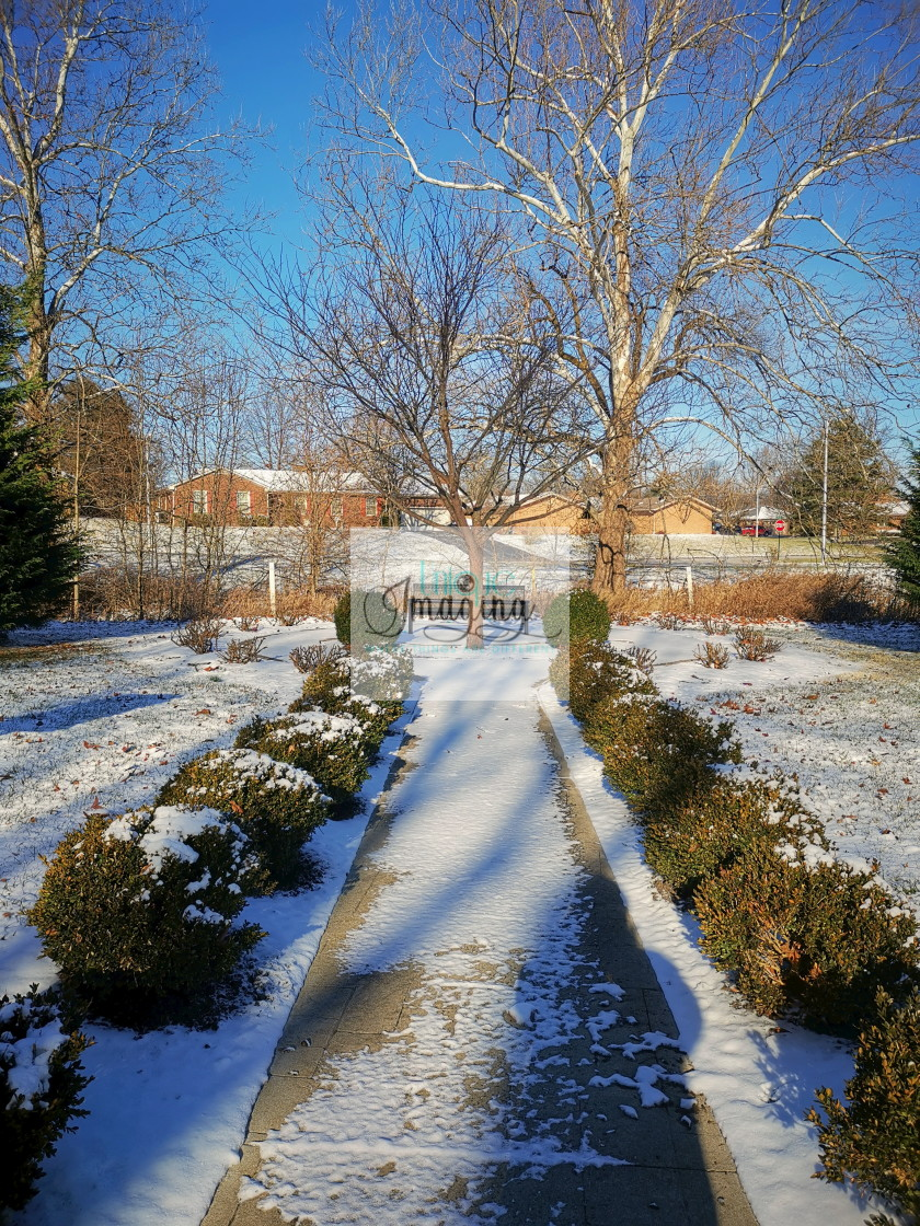 """""""Winter at Eastland Park"""" stock image"""