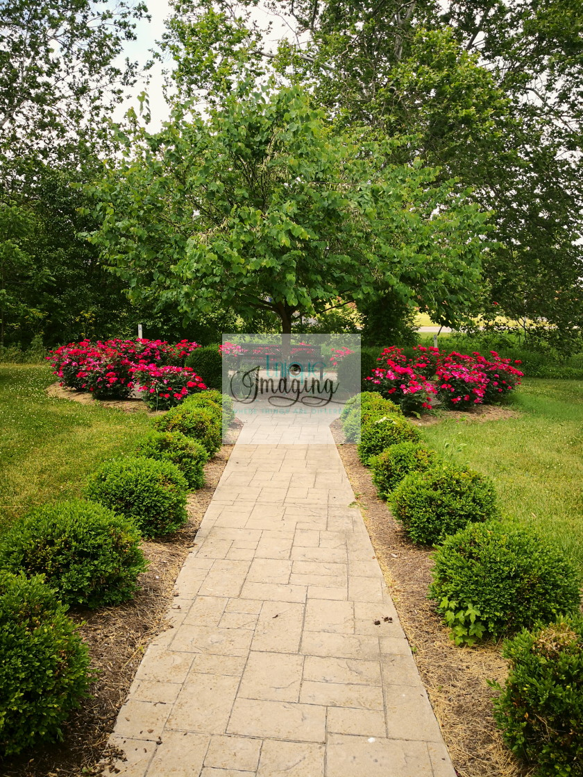 """Summer at Eastland Park"" stock image"