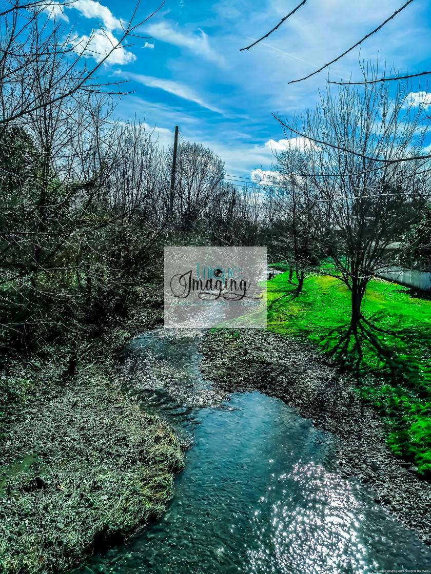 """""""Spring Creek"""" stock image"""