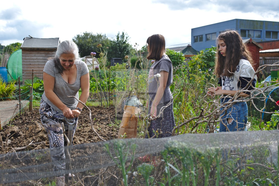 """""""Mother and daughters working together at an allotment"""" stock image"""