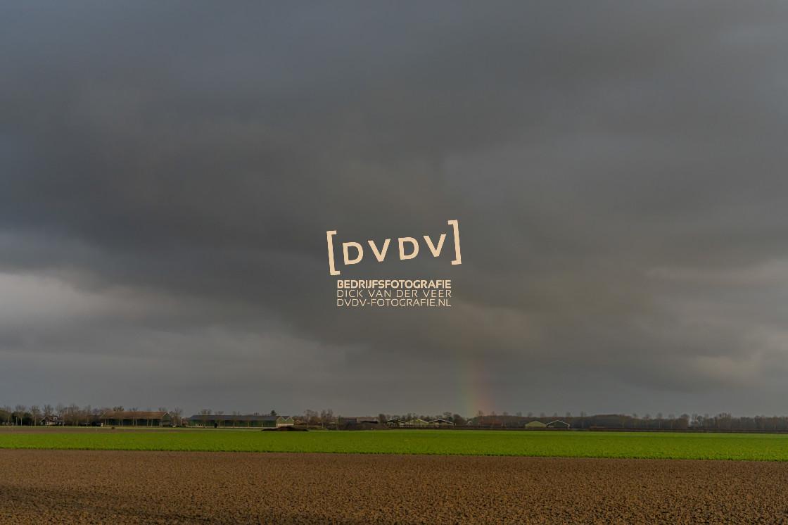 """""""102899 Polder Landschap Schouwen-Duiveland"""" stock image"""