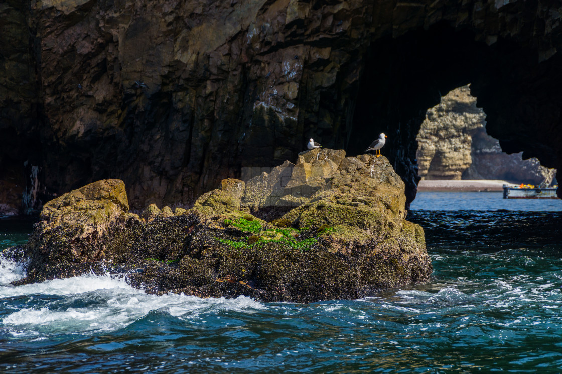 """Birds Sitting on a Rock in Ocean by a Sea Cave"" stock image"
