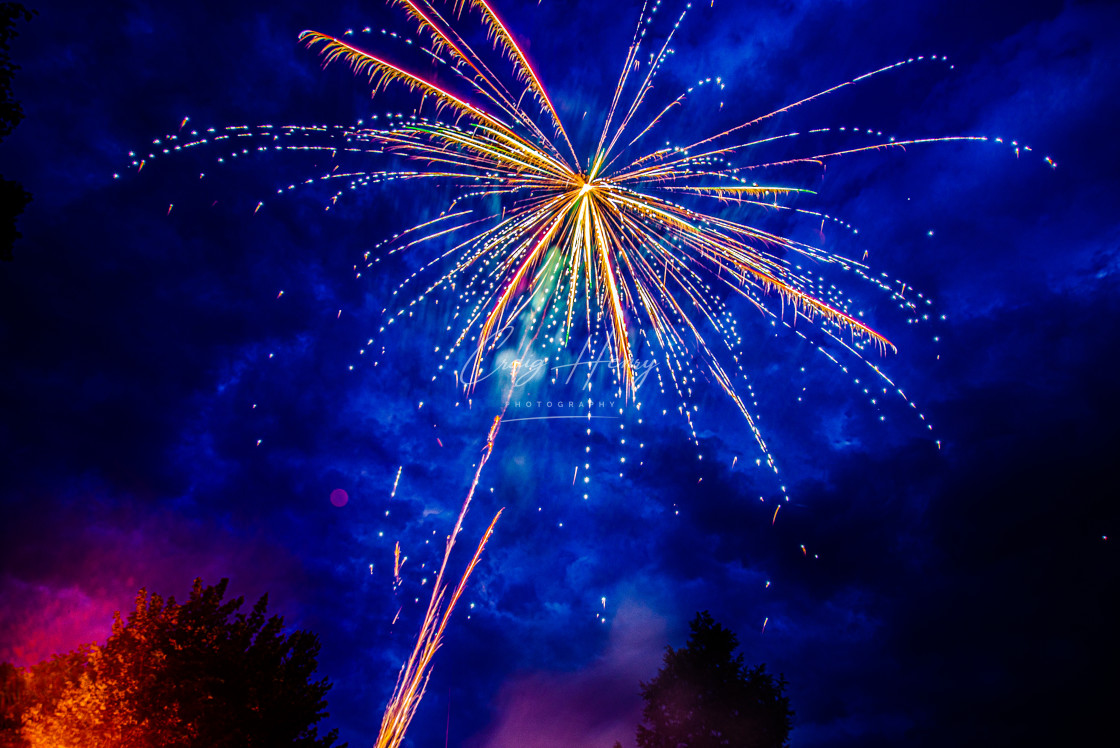 """Palm Tree Fireworks"" stock image"