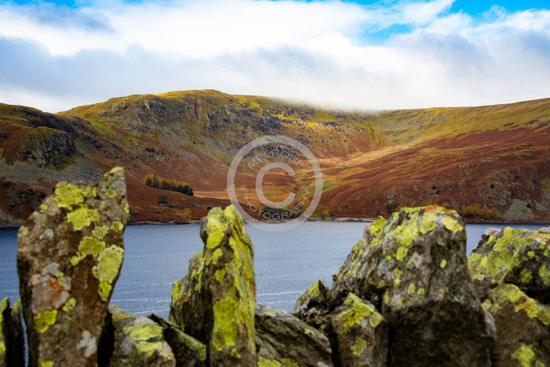 """""""Looking through the stone wall into RSPB Hawswater Cumbria"""" stock image"""