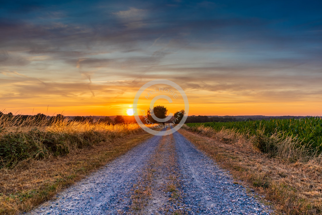"""""""Sunrise in Lege France Golden Morning"""" stock image"""