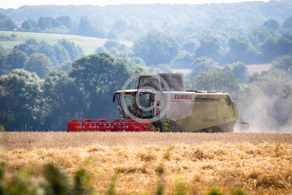 """Combine Harvester Farming"" stock image"