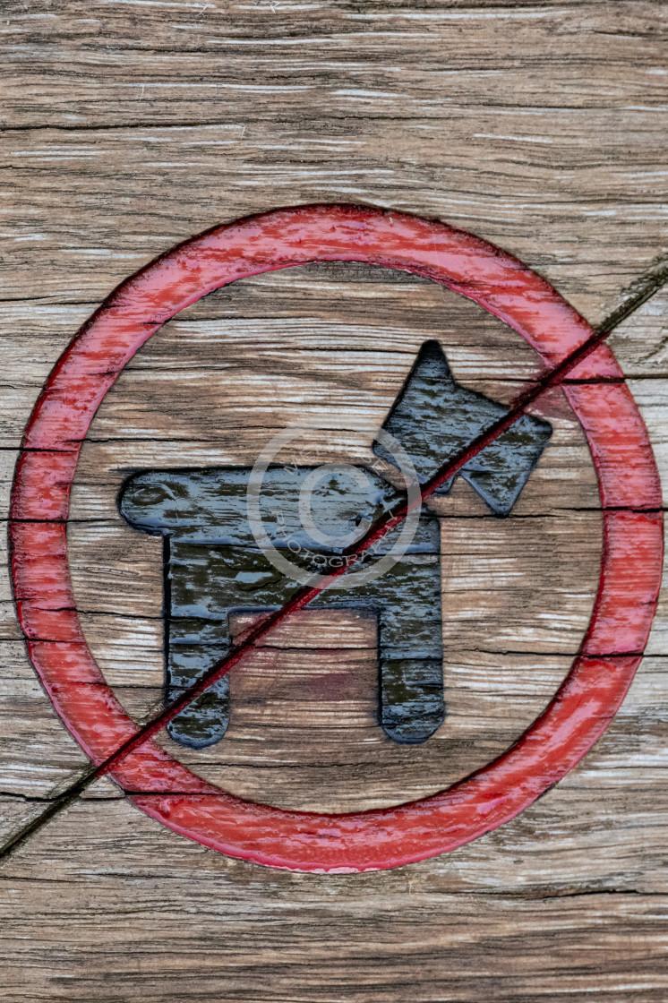 """No dog sign Scottie black"" stock image"