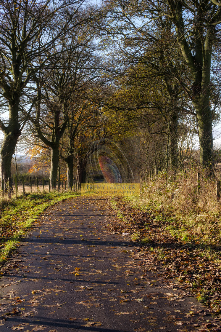 """A walk in Clackmannan"" stock image"