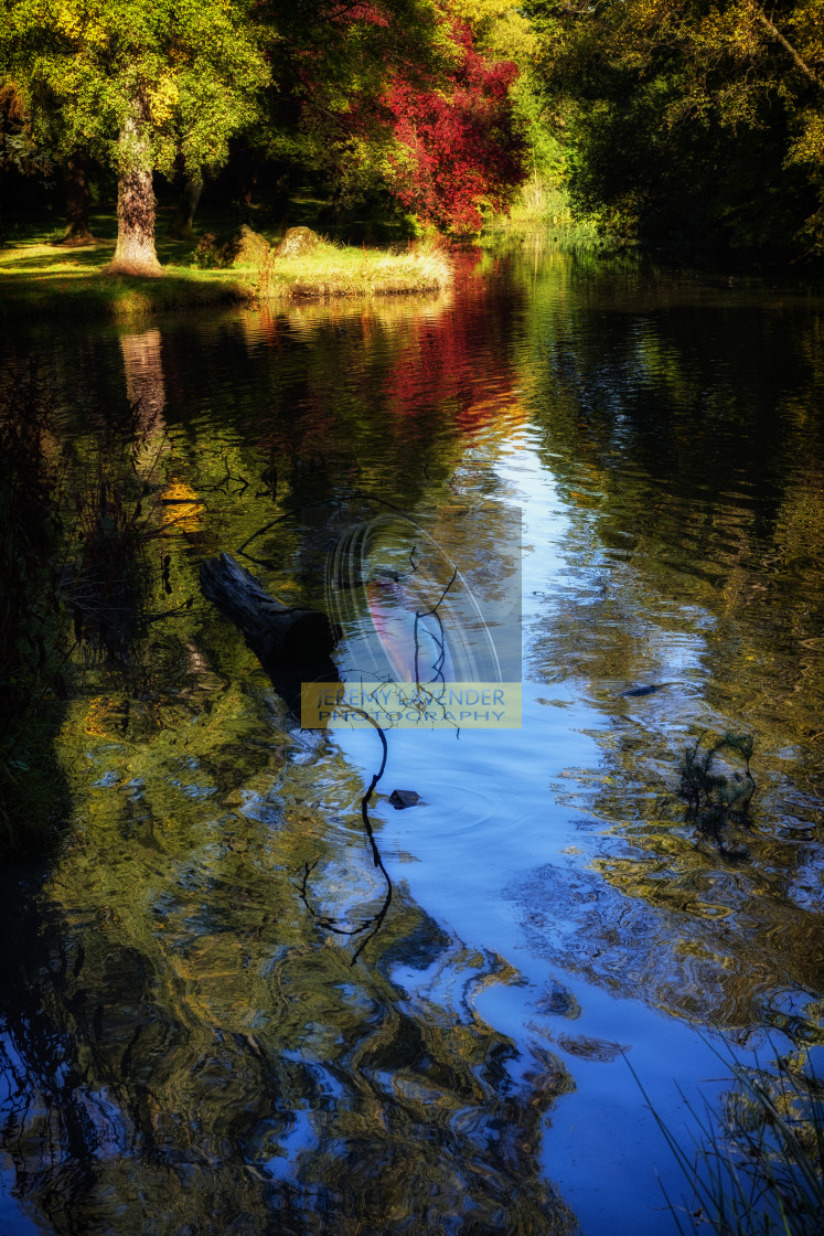 """""""The pond at Inglewood House"""" stock image"""