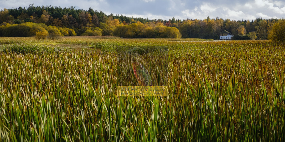 """""""The boat house on Moor Loch"""" stock image"""