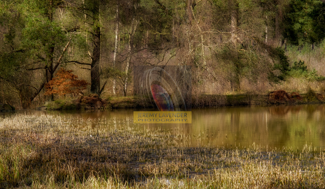 """A walk around Keir Dam"" stock image"