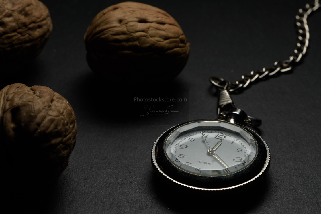 """Pocket watch and walnuts"" stock image"