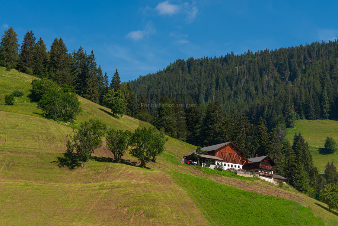 """""""Summer landscape with mountain hut surrounded by greenery"""" stock image"""