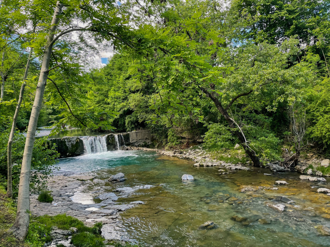 """""""A river with a small cascade of water flows between the trees of a forest on a sunny day"""" stock image"""
