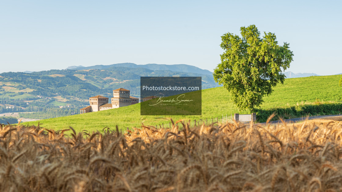 """Emilian hills, ancient fortress and wheat field"" stock image"