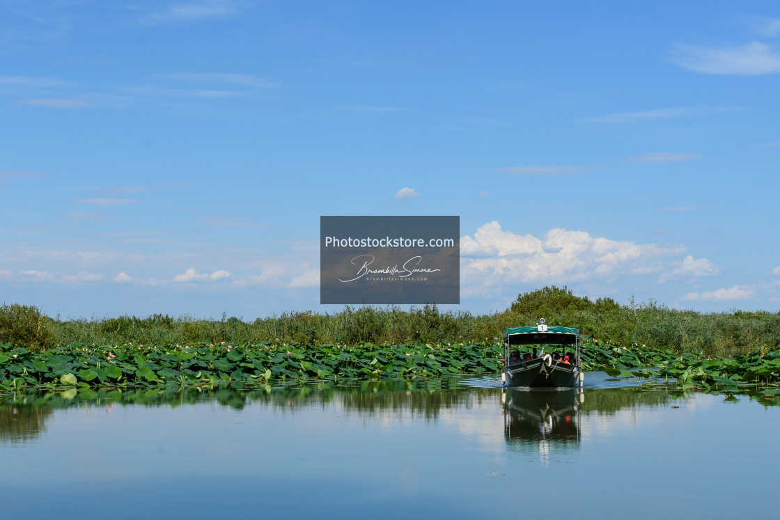 """Boat arriving in the water mirror"" stock image"