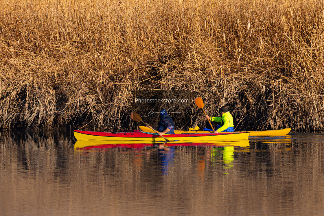"""""""Two rowers sail on the river"""" stock image"""