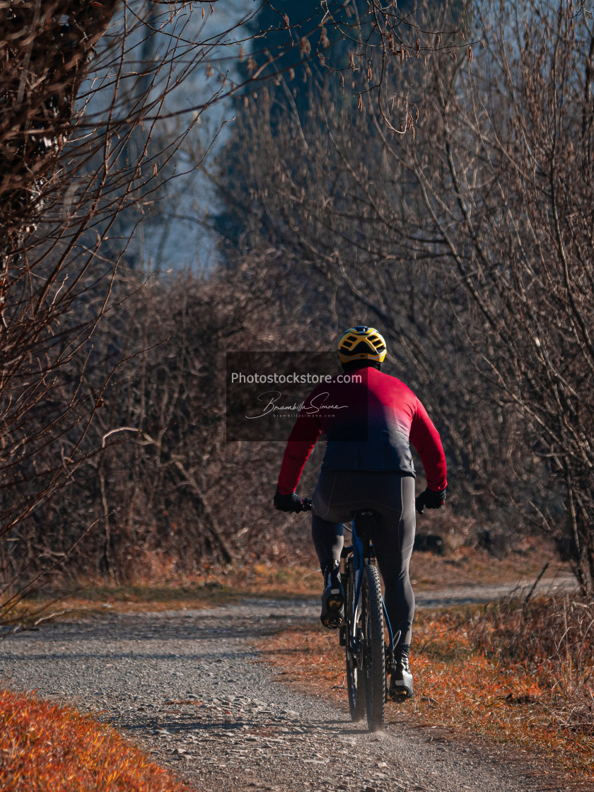 """""""Rear view of a cyclist riding his mountain bike on a path in nat"""" stock image"""