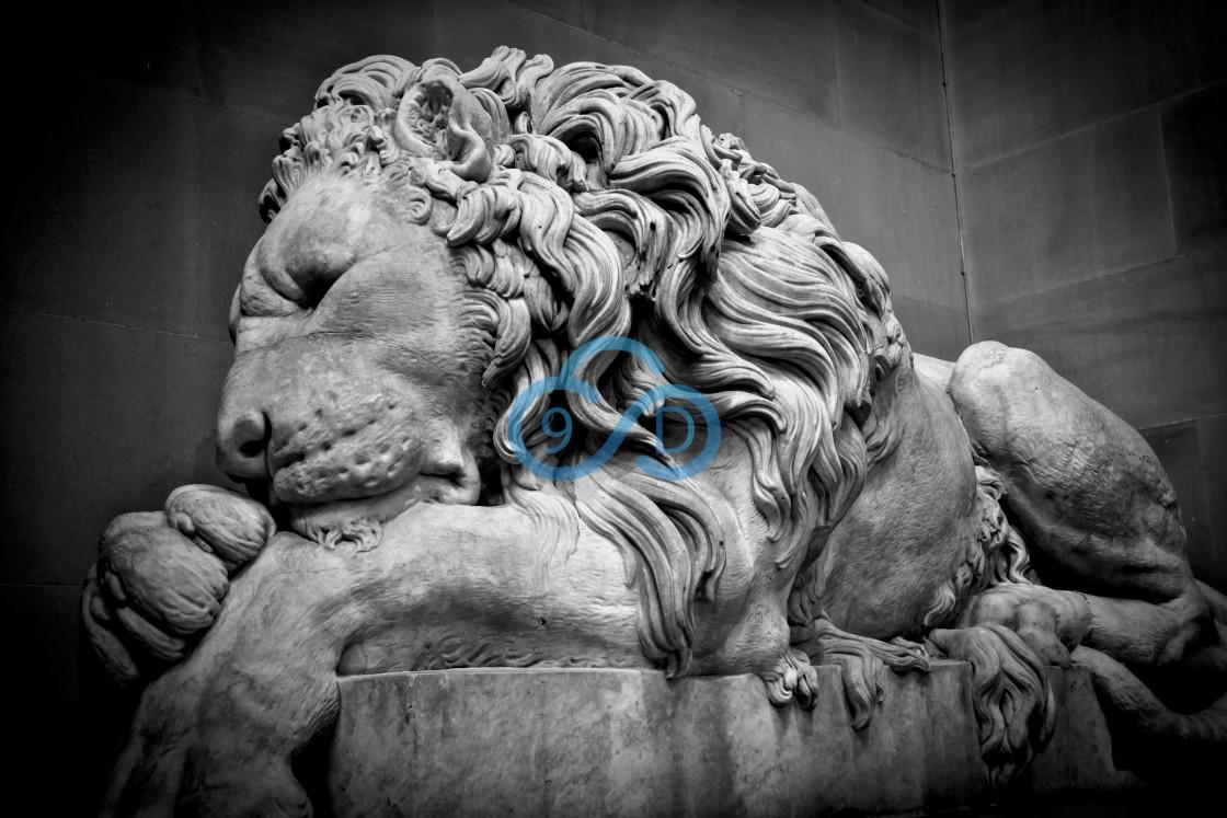 """The Sleeping Lion"" stock image"