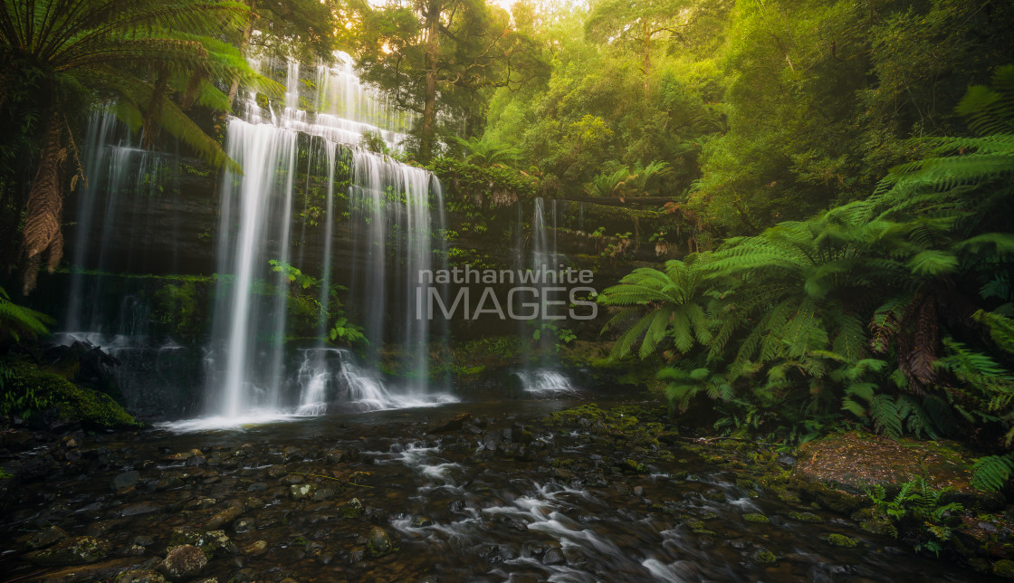 """""""Russell Falls"""" stock image"""