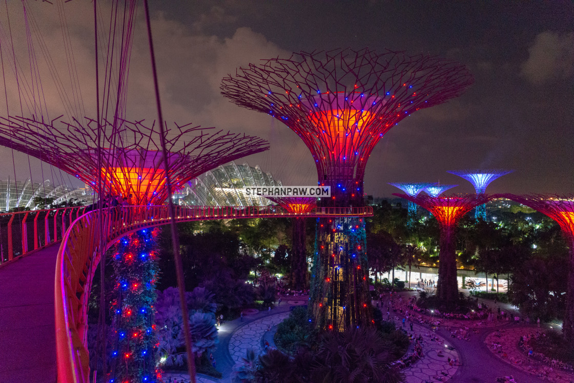 """Supertree Grove // Gardens by the Bay, Singapore"" stock image"